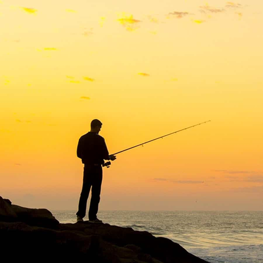 Tackle World | Expert Advice for Everything Fishing | Fishing Equipment