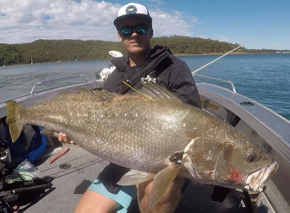 Local Hero Jack mulloway