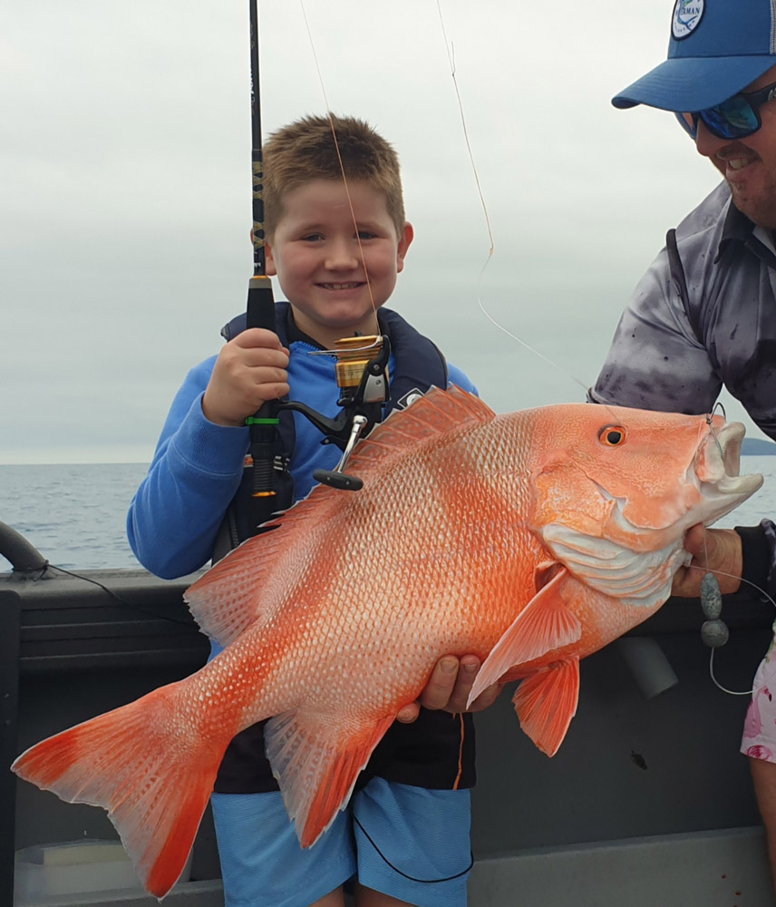 Tackle World's Local Hero Archie with Red Emperor
