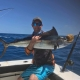 Gregg Chapman The Secret Spot Tackle World Yeppoon Sail Fish